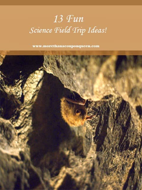 Science Field Trip Ideas