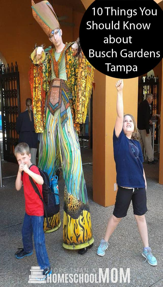 10 Things you Should Know about Busch Gardens Tampa - Busch Gardens Tampa tips to help you make the most of your trip to Busch Gardens with kids. #buschgardens #Tampa #travel #florida #BuschGardensTampa #traveltips #themepark