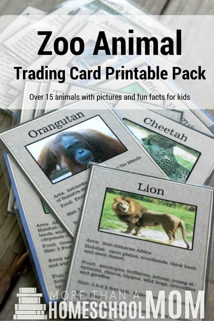 zoo animal trading card printable pack - #homeschool #education #printable #freeprintable #zoo #tradingcards #learning #fieldtrip