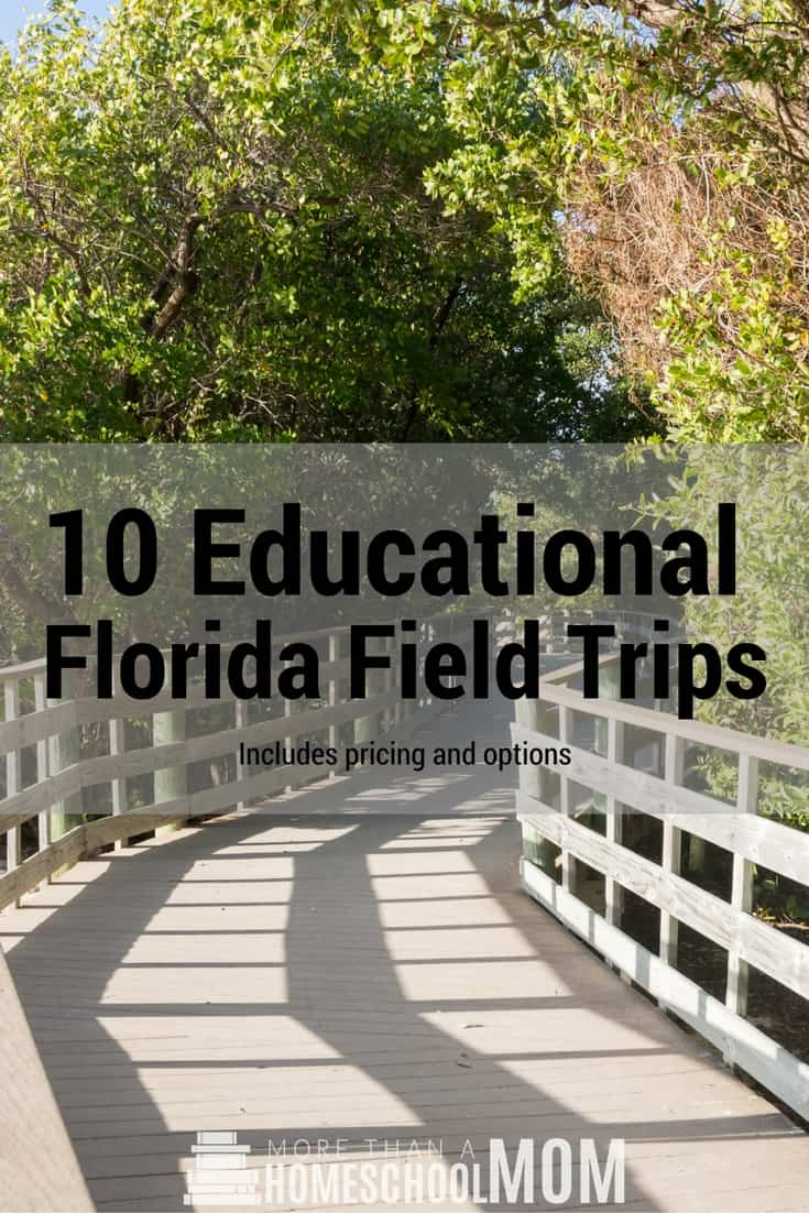 10 Educational Florida Field Trips - #education #Florida #fieldtrips #educational