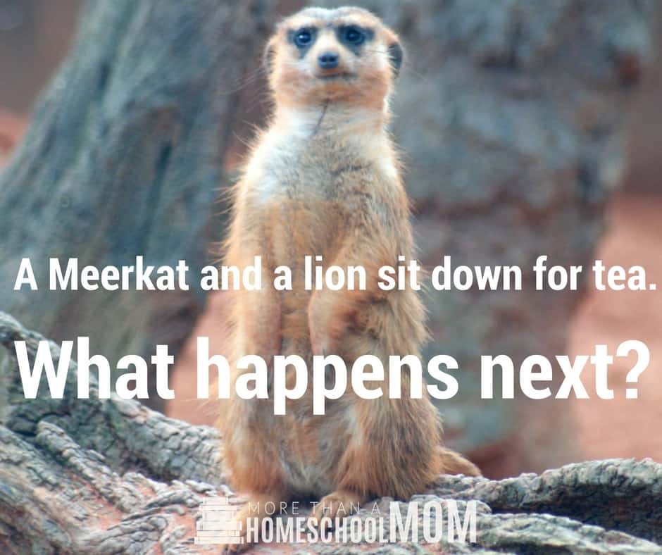 A Meerkat and a lion sit down for dinner