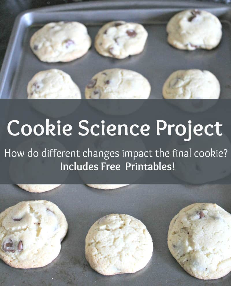 Cookie Science Project - #Stem #Science #Experiment #edchat #homeschool #education