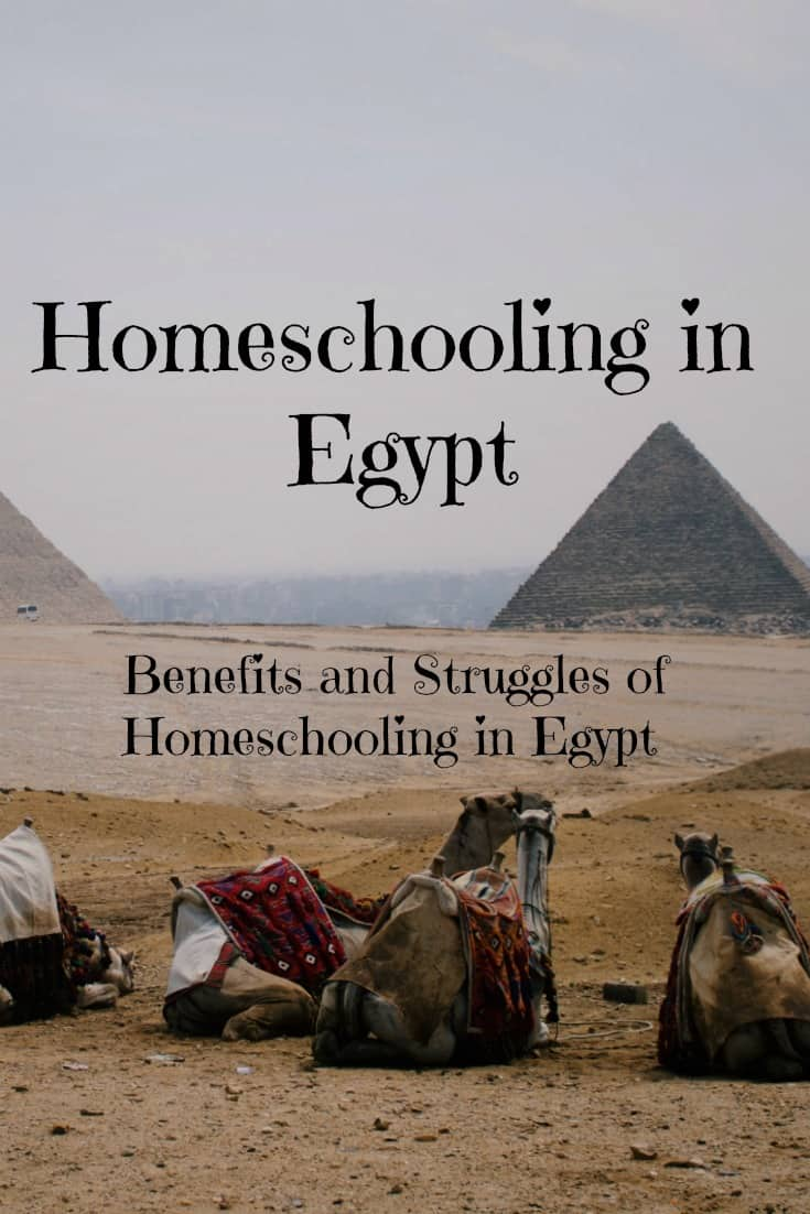 Homeschooling in Egypt - Benefits and struggles of homeschooling in Egypt - #Homeschool #internationalHomeschool
