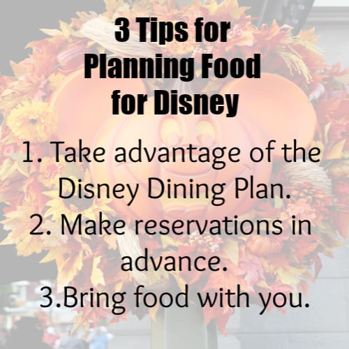 3 Tips for planning food for Disney