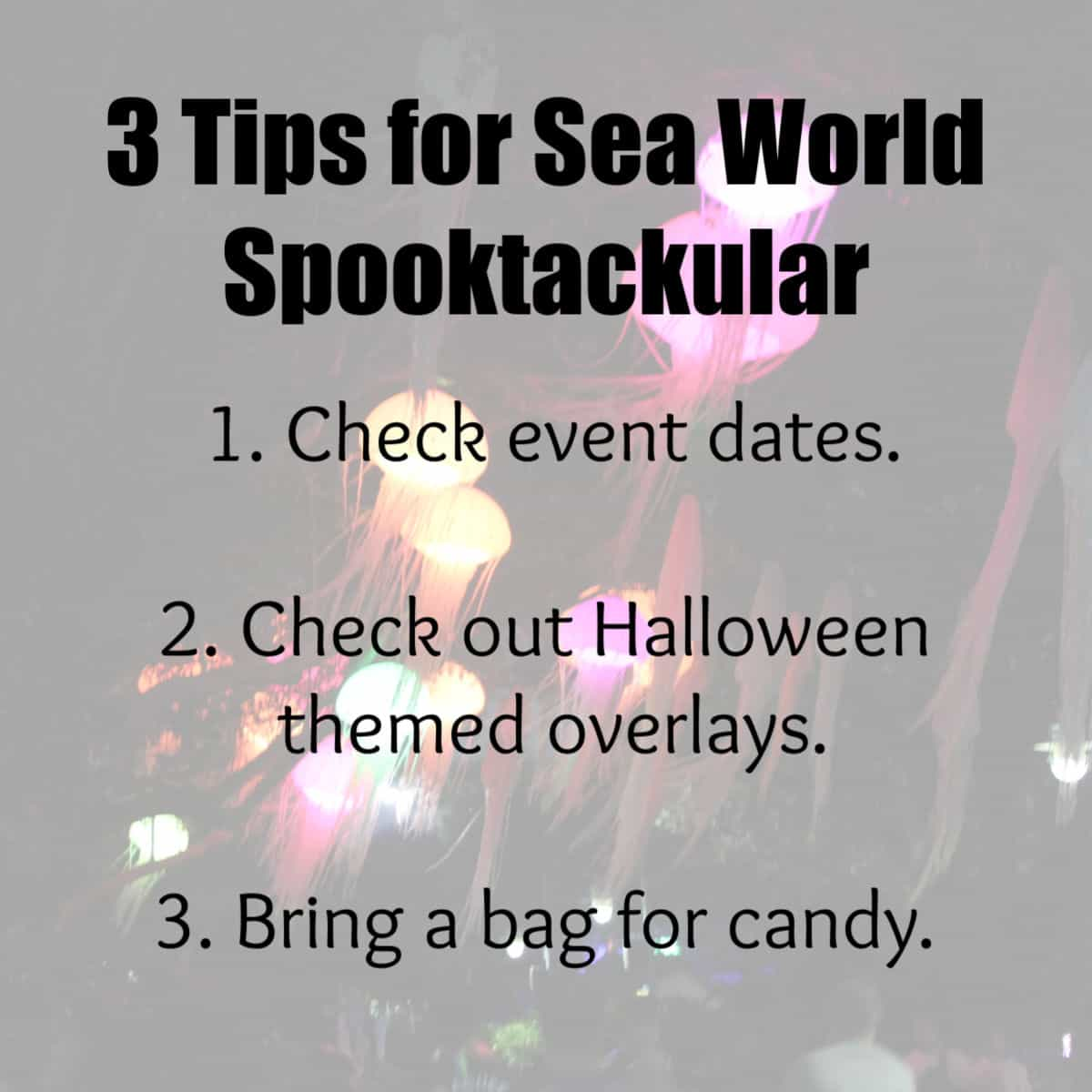 3 Tips for Sea World Spooktackular