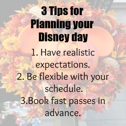 3 Tips for planning your Disney day