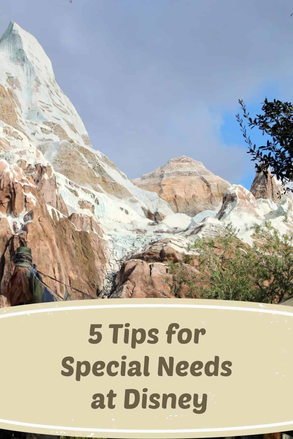 5 Tips for Special Needs at Disney - Avoid a bad Disney day with special needs with these tips.
