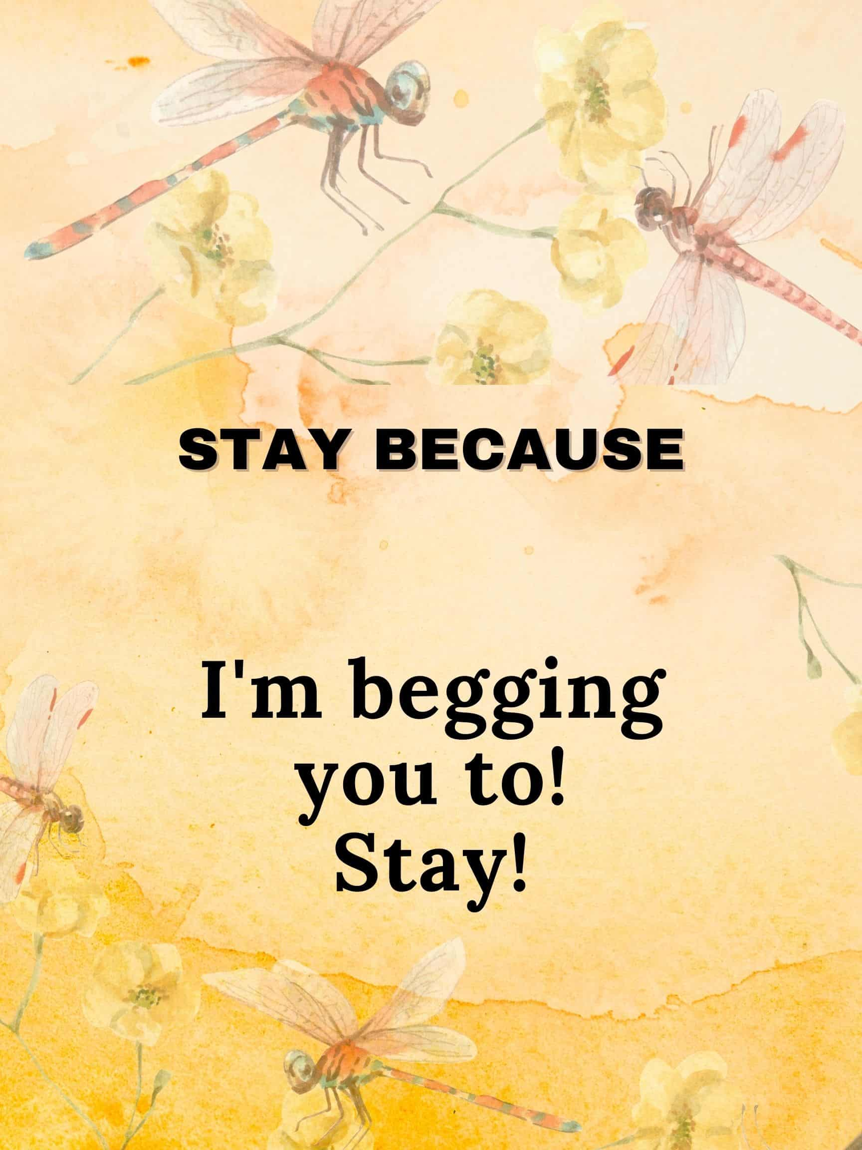 Stay because I'm begging you to stay. #StayBecause