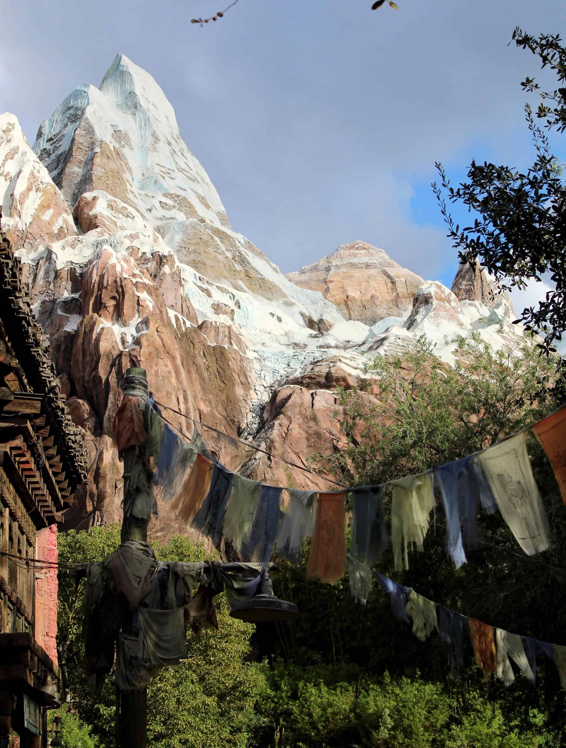 Holidays at Disney's Animal Kingdom Everest