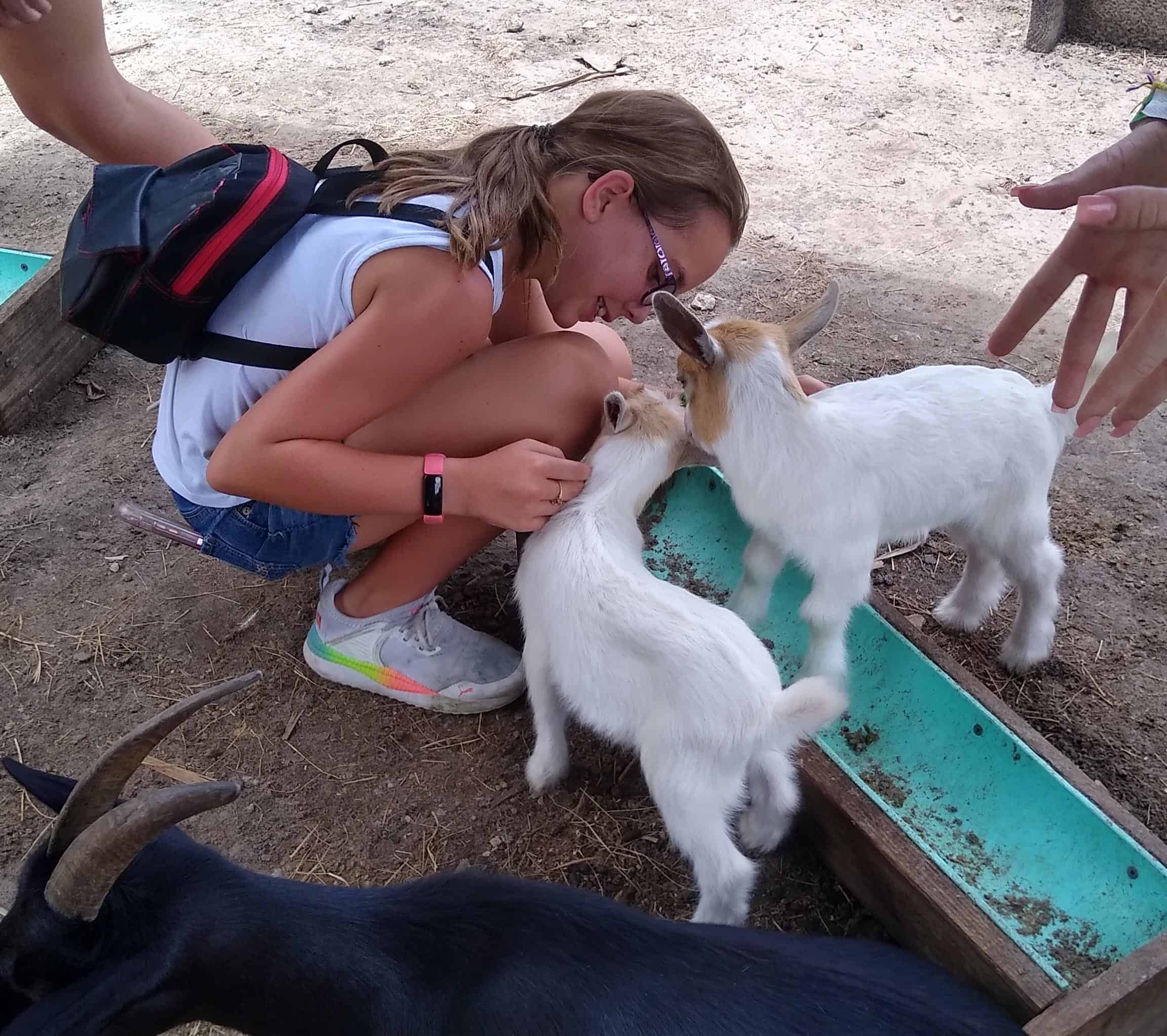 Girl with baby goats at Wild Florida