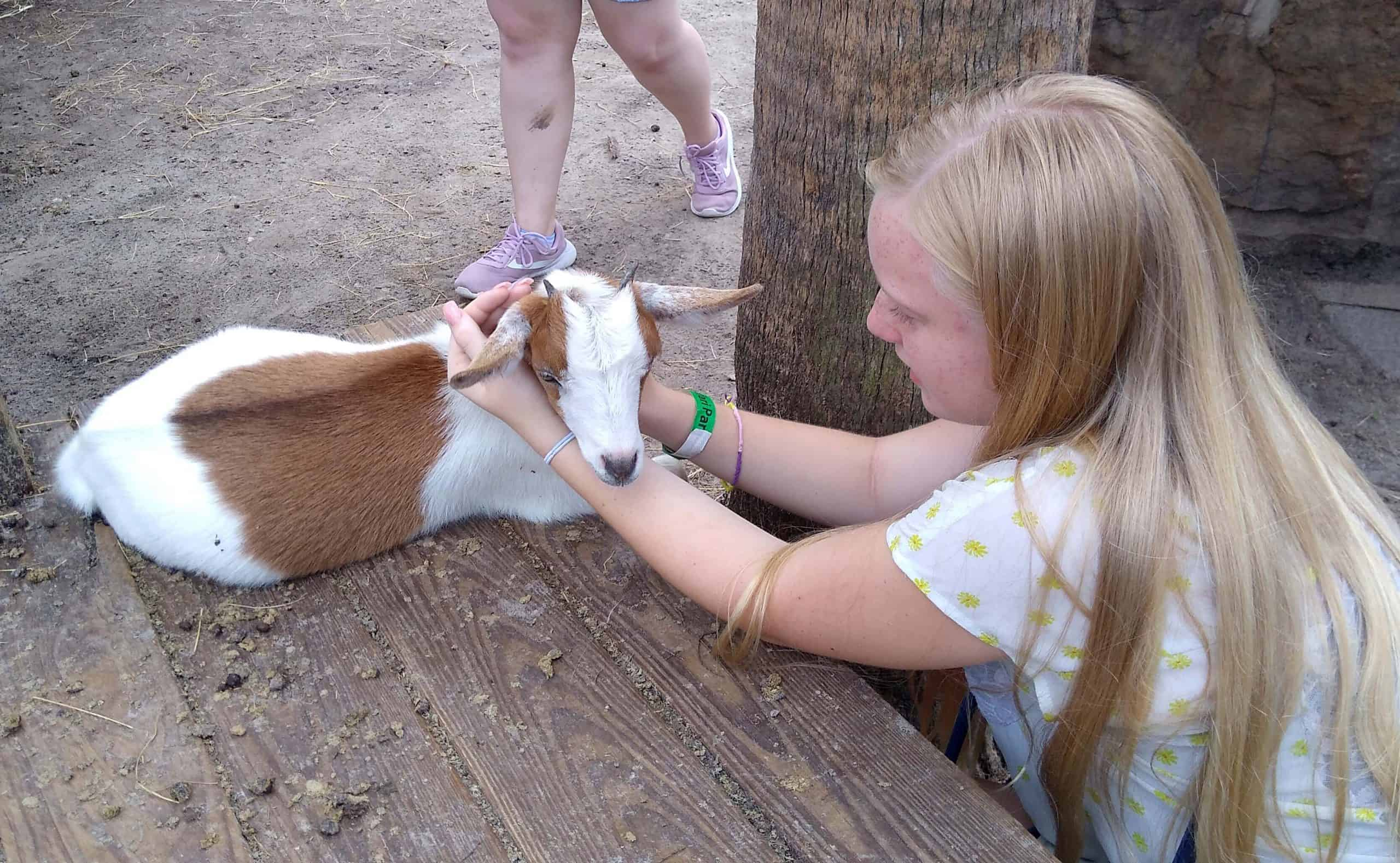 Girl with goat at Wild Florida