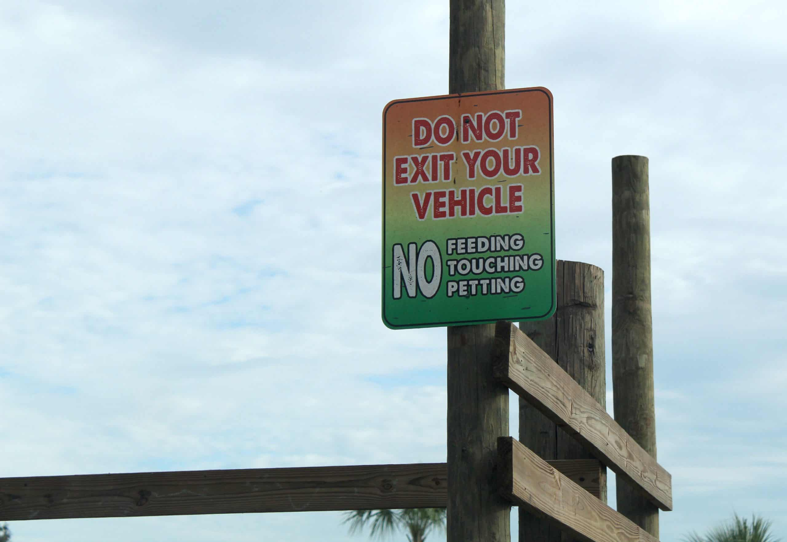 Wild Florida Safari Rules